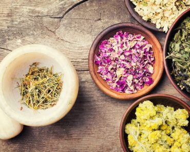 Reasons why Ayurveda is going to become popular